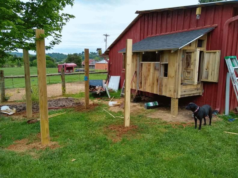 chicken coop 30